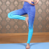 Women Twin Fade Leggings - Blue-Beyond Athlete