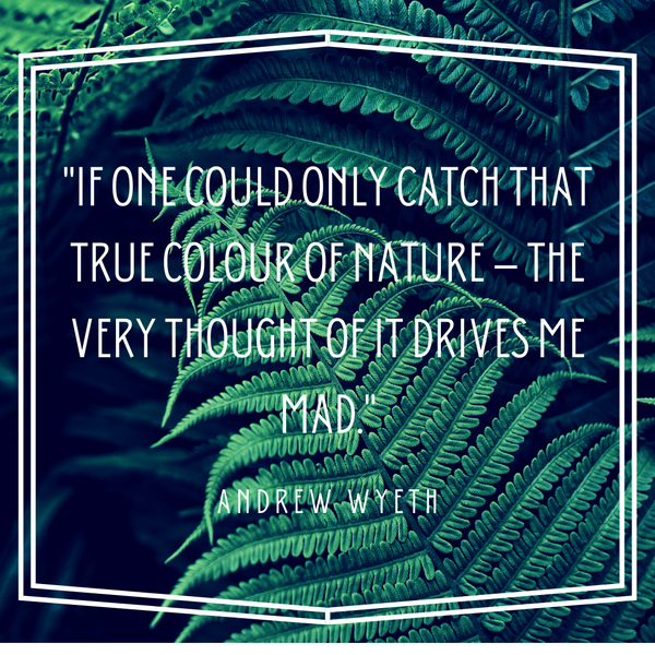 Catch that true colour of nature – Andrew Wyeth