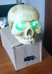Plastic skull with green leds