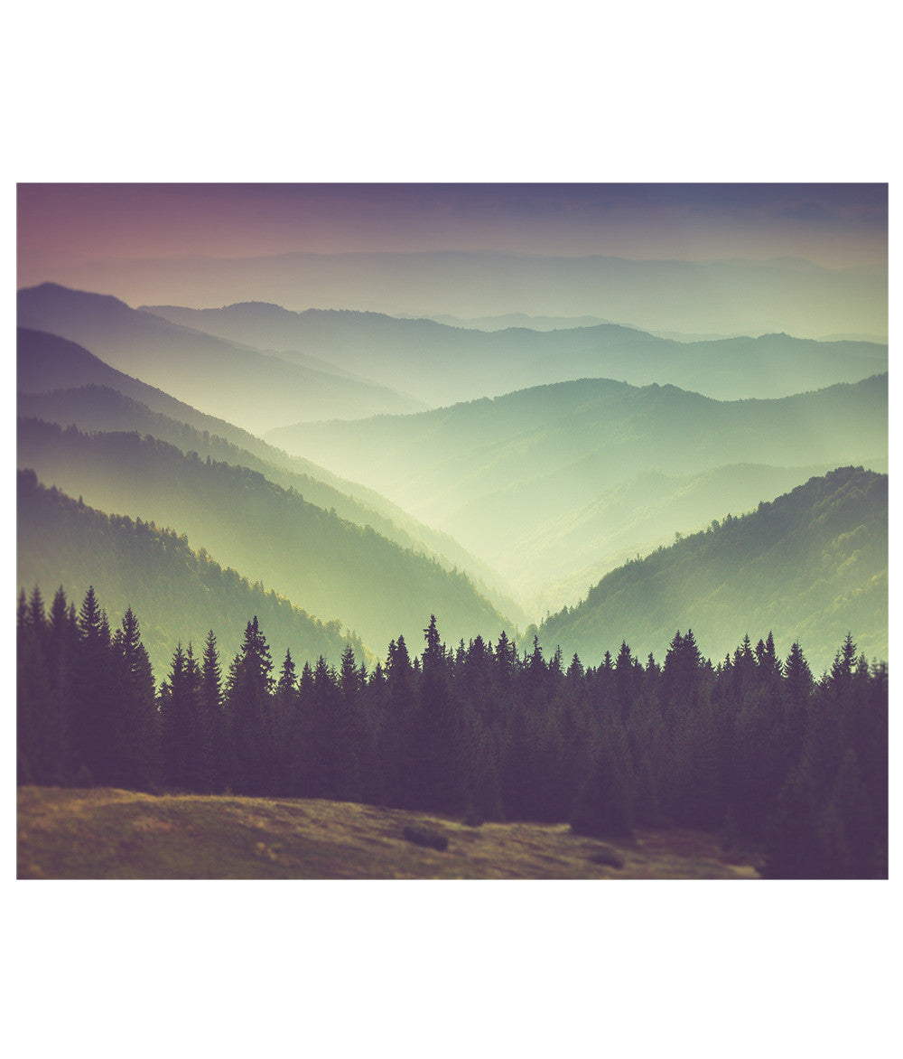 Mountain View Photograph Wall Art - Peel and Stick Wallpaper