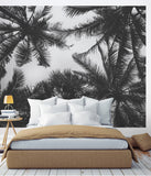 Palm Tree Photograph Wall Art - Peel and Stick Wallpaper