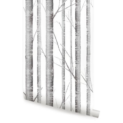 Birch Tree Wallpaper - Peel and Stick