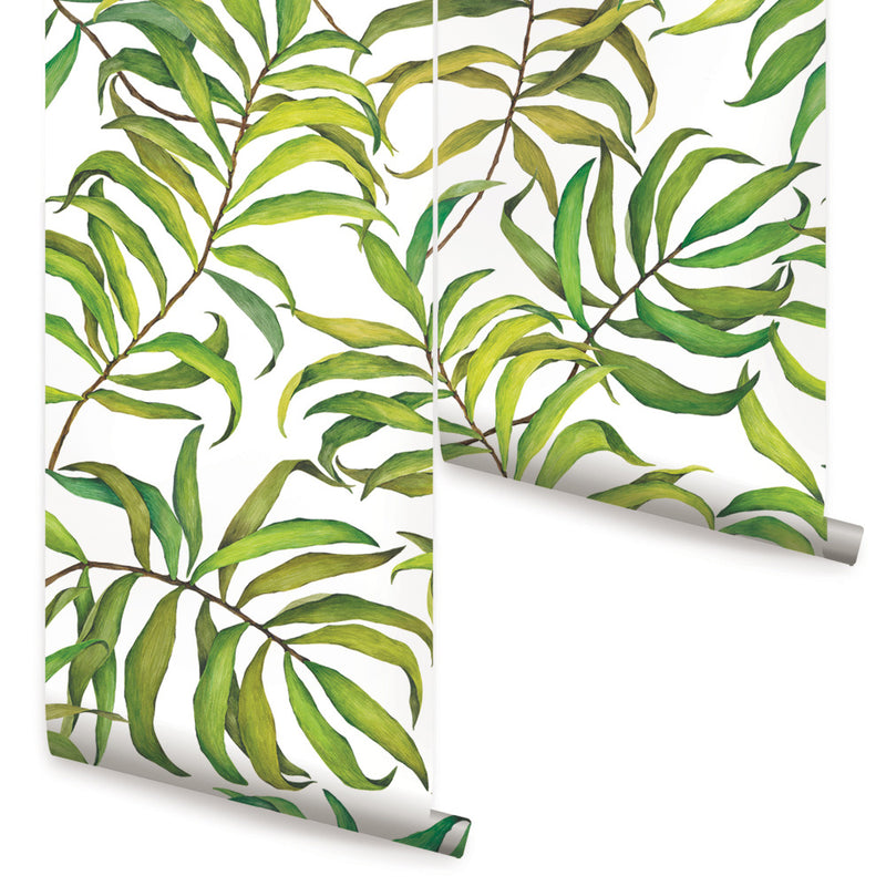 TROPICAL LEAVES WALLPAPER - LARGE - PEEL AND STICK