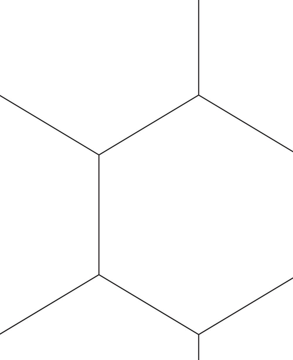 Hexagon Lines Wallpaper - Peel and Stick