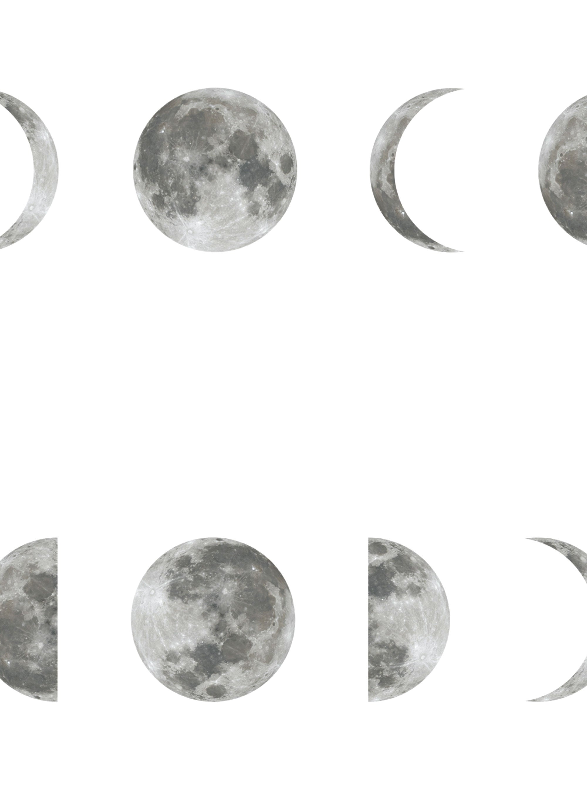 Phases Of The Moon Wallpaper Peel And Stick