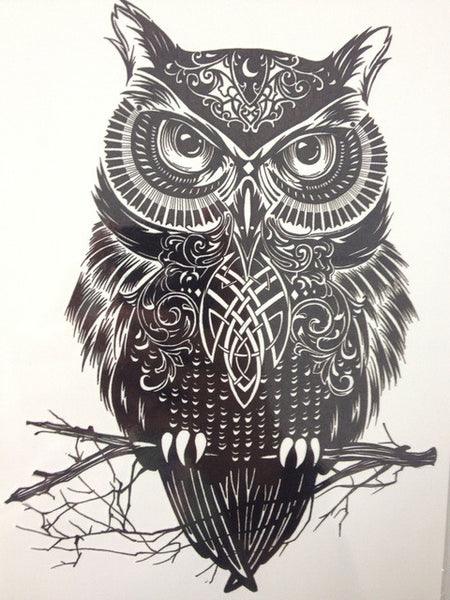 Wall Tattoo Cute Sweet Owl m1513 Action Price