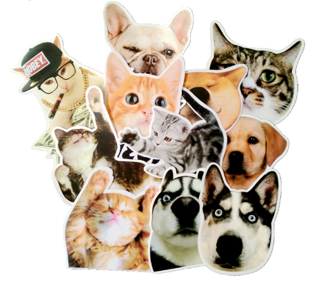Cute Animals - 24 Pieces - Eleven Gift