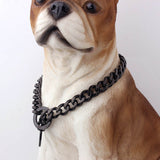 Chishock- Gold Chain Pet Safety Collar