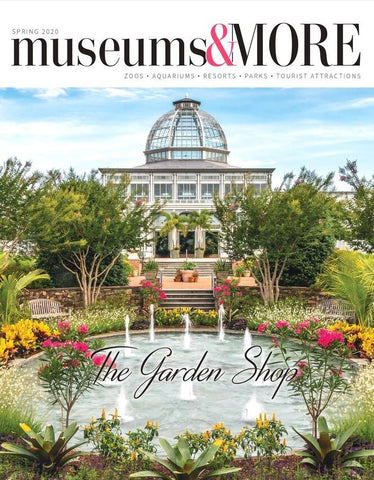 Museums & MORE Spring 2020 magazine cover
