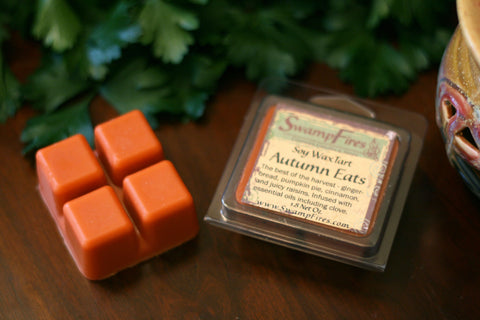 Autumn Eats - Pumpkin Ginger Soy Wax Tart