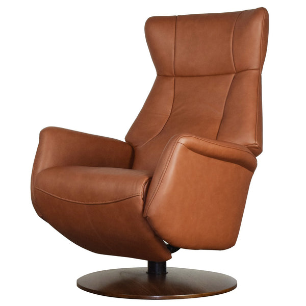 Edmonton Furniture Store | Palliser Custom QUANTUM Power Recliner - Q31