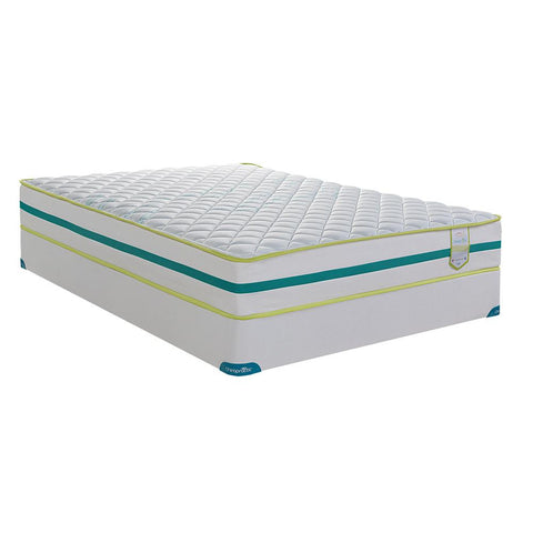 SpringWall Med Firm Mattress - MWTAM