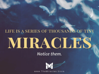 Life is a series of thousands of tiny little miracles. Notice them. ~ Unknown