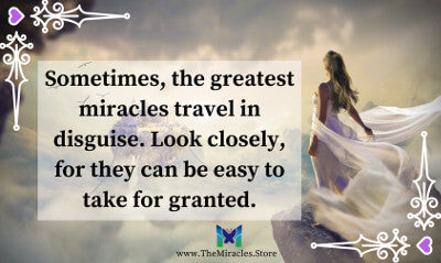Sometimes the greatest miracles travel in disguise. Look closely, for they can be easy to take for granted.