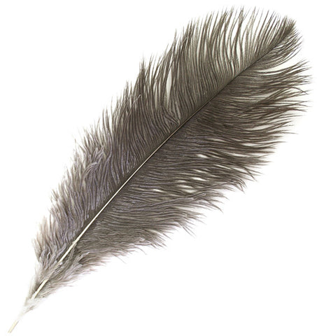 "Ostrich Drab Feathers - Natural (3""-6"")"