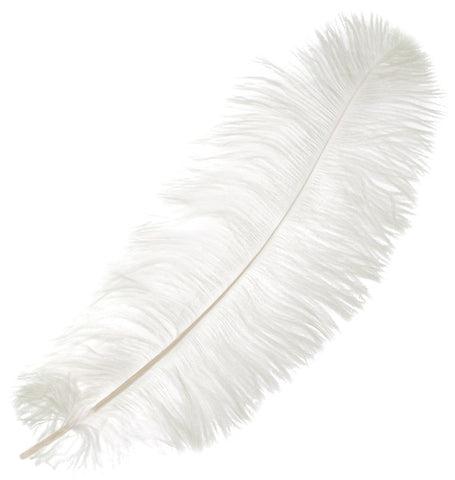 "Ostrich Drab Feathers - White (3""-6"")"