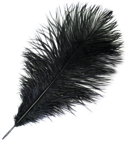 "Ostrich Drab Feathers - Black (3""-6"")"