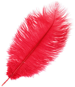 "Ostrich Drab Feathers - Red (3""-6"")"