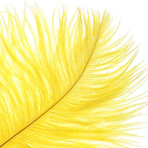 "Ostrich Drab Feathers - Yellow (3""-6"")"