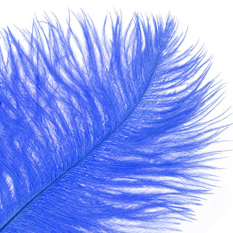 "Ostrich Drab Feathers - Royal Blue (3""-6"")"