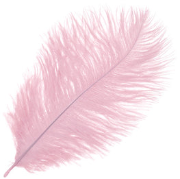 "Ostrich Drab Feathers - Baby Pink (3""-6"")"