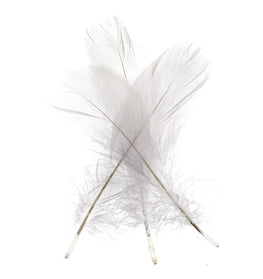 Goose Nagorie Loose Feathers - White (6g)