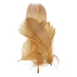 Goose Nagorie Loose Feathers - Brown (6g)