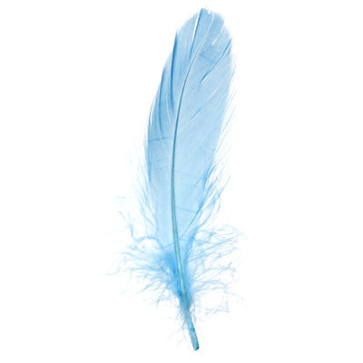 Goose Nagorie Loose Feathers - Baby Blue (6g)