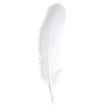 6pcs Turkey Quills - White