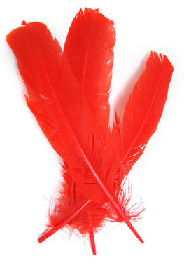 6pcs Turkey Quills - Red