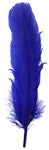 6pcs Turkey Quills - Royal Blue