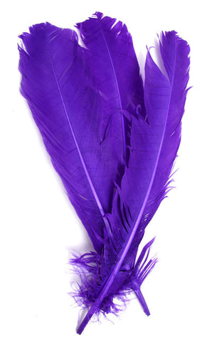 6pcs Turkey Quills - Purple