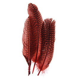 10pcs Guinea Fowl Quills - Red