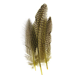 10pcs Guinea Fowl Quills - Yellow