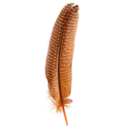 10pcs Guinea Fowl Quills - Orange
