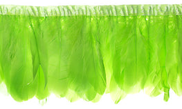 "Goose Nagorie Feather Trim - Lime (5""-7"")"