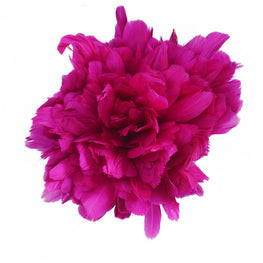 "Feather Trim - Goose Feather Satinette Fringe Trims - Hot Pink - 5""-7"" (1 yard)"