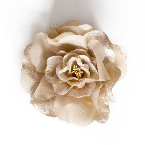 Millinery Flower - Artificial Silk Velvet & Satin Large Rose - Champagne (1pc)