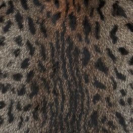 European Domestic Rabbit Fur Hide in Ocelot Pattern - Single Pelt