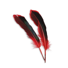10pcs Mallard Duck Wing Feathers - Red (3-5 inches)