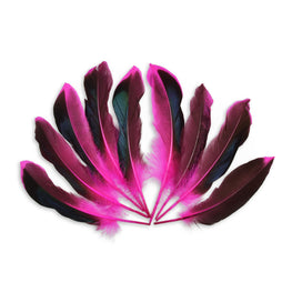 10pcs Mallard Duck Wing Feathers - Hot Pink (3-5 inches)