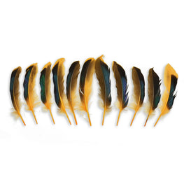 10pcs Mallard Duck Wing Feathers - Light Orange (3-5 inches)