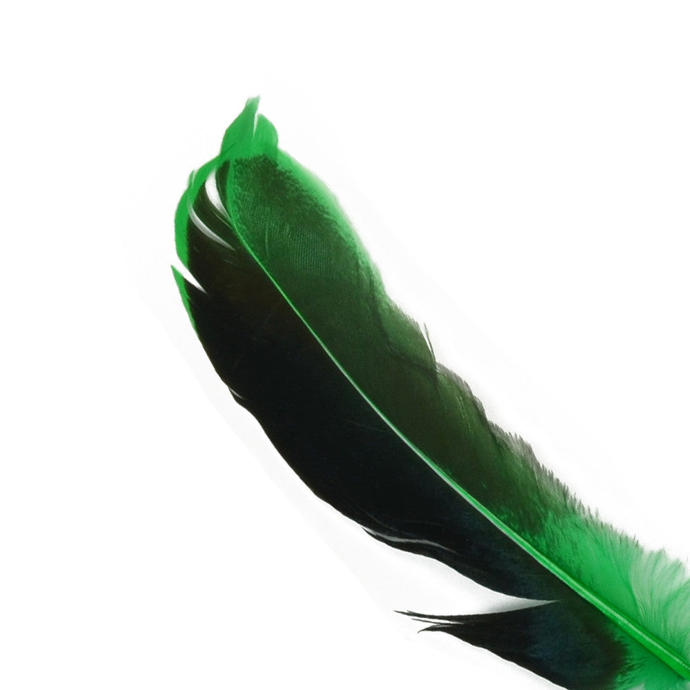 10pcs Mallard Duck Wing Feathers - Kelly Green (3-5 inches)