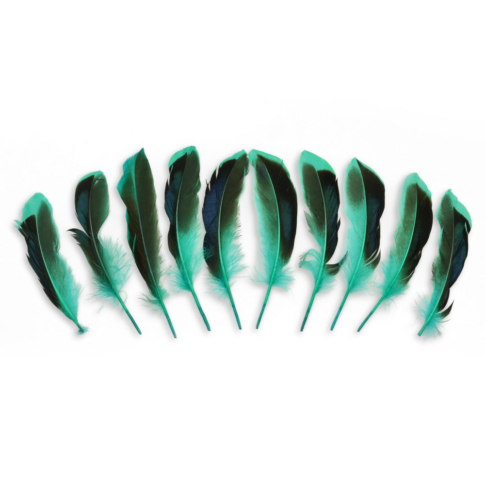 10pcs Mallard Duck Wing Feathers - Aqua (3-5 inches)