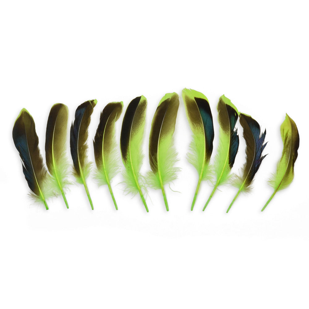10pcs Mallard Duck Wing Feathers - Lime (3-5 inches)