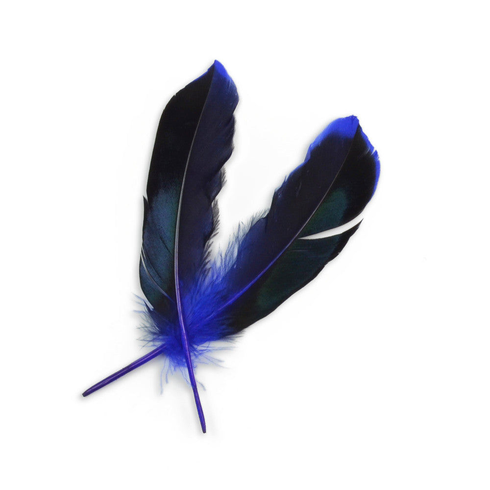 10pcs Mallard Duck Wing Feathers - Royal Blue (3-5 inches)
