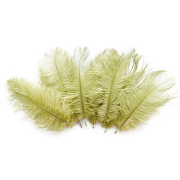"Ostrich Drab Feathers - Olive (3""-6"")"