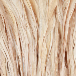 Rooster Tail Feathers in Dusty Sand (10-12 inches)