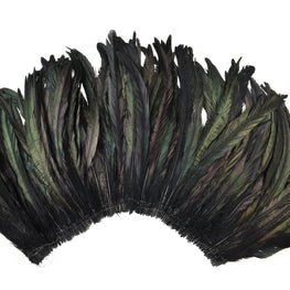 Rooster Tail Feathers in Natural Black (10-12 inches)