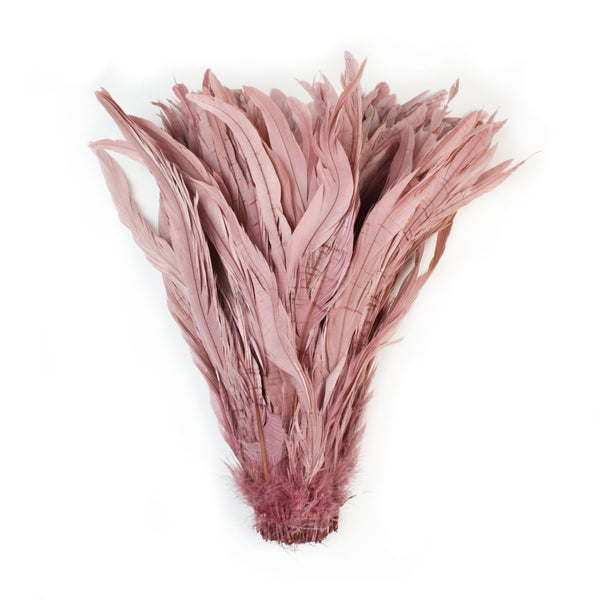 Rooster Tail Feathers in Dusty Pink (10-12 inches)